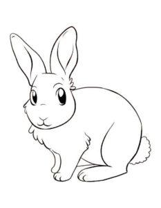 Заяц картинки раскраски (6)