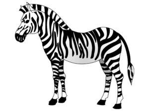 Зебра картинки раскраски (19)
