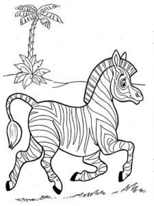 Зебра картинки раскраски (21)