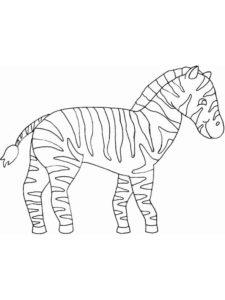 Зебра картинки раскраски (23)