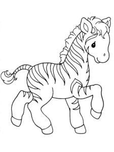 Зебра картинки раскраски (3)