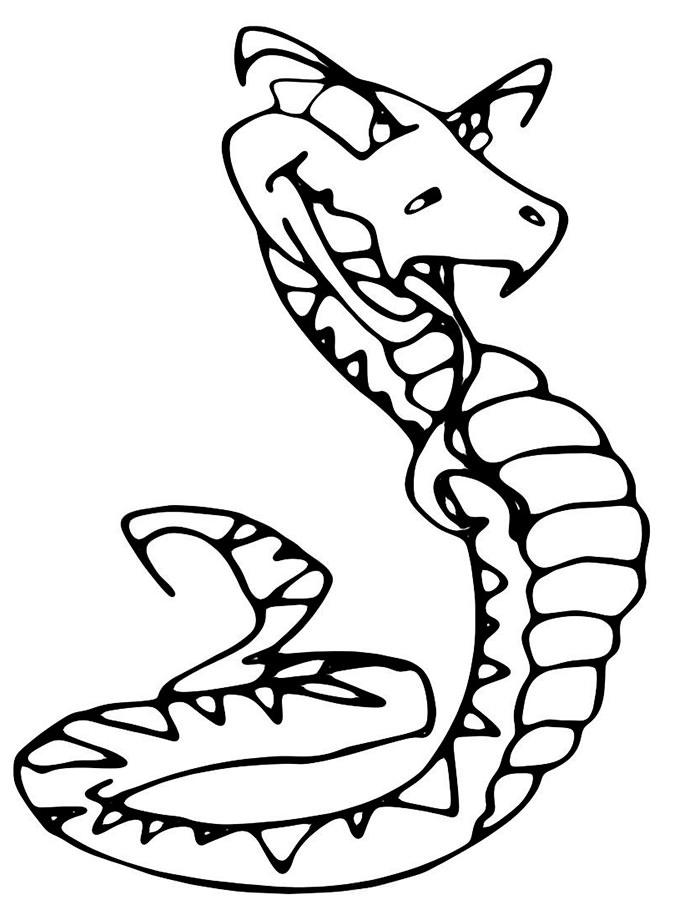 Змеи картинки раскраски (18)