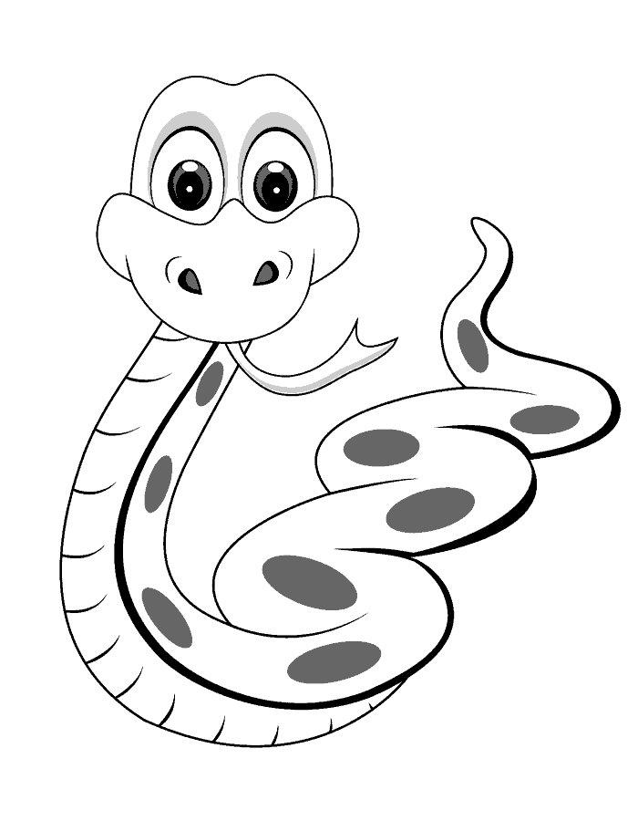 Змеи картинки раскраски (20)