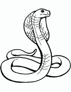 Змеи картинки раскраски (23)