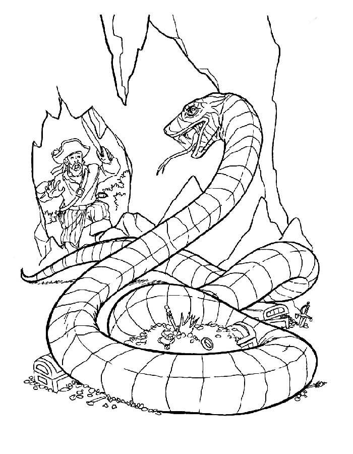 Змеи картинки раскраски (28)