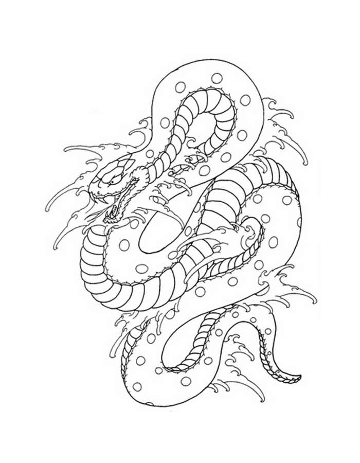 Змеи картинки раскраски (29)