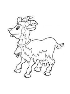 Коза картинки раскраски (1)