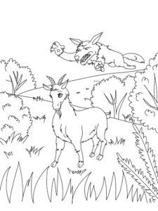 Коза картинки раскраски (12)