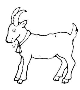 Коза картинки раскраски (18)