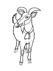 Коза картинки раскраски (7)