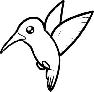 Колибри картинки раскраски (25)