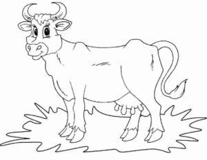 Корова картинки раскраски (12)