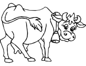 Корова картинки раскраски (2)