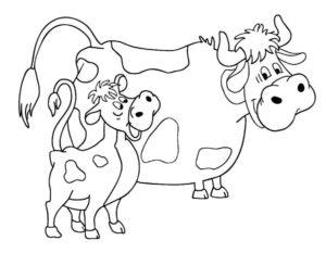 Корова картинки раскраски (8)