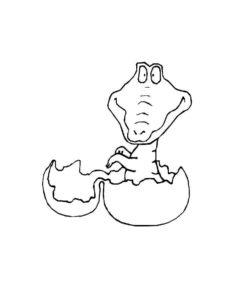 Крокодил картинки раскраски (4)