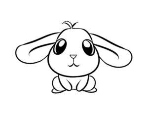 Кролик картинки раскраски (11)