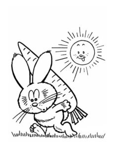 Кролик картинки раскраски (13)