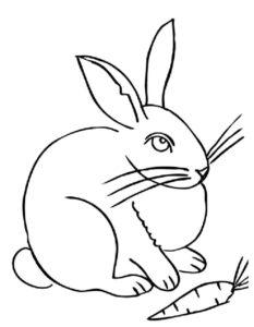 -картинки-раскраски-2-233x300 Кролик