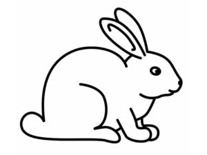 Кролик картинки раскраски (22)