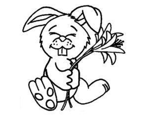 Кролик картинки раскраски (25)