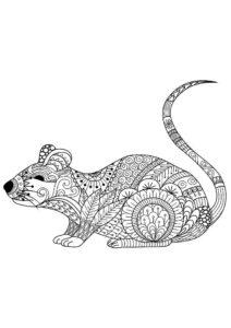 Крыса картинки раскраски (11)