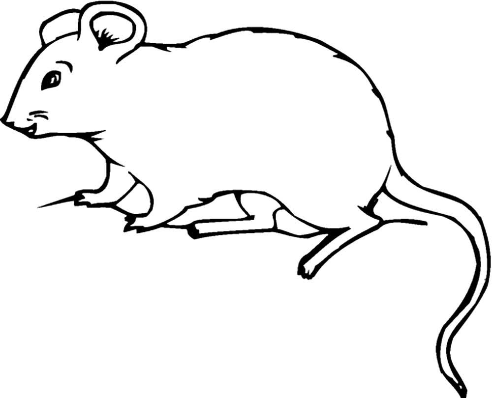 Картинки мышек контур