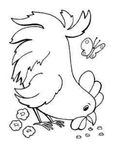 Курица картинки раскраски (19)