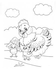Курица картинки раскраски (22)