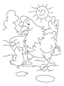 Курица картинки раскраски (51)