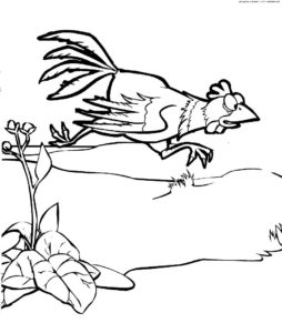 Курица картинки раскраски (63)