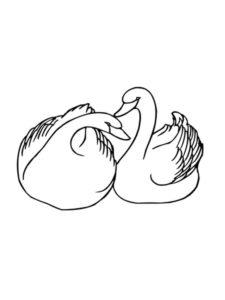 Лебедь картинки раскраски (15)
