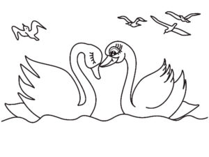 Лебедь картинки раскраски (24)