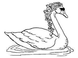 Лебедь картинки раскраски (26)