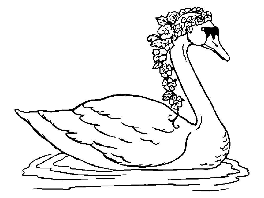 картинки лебедь раскраски ограничение