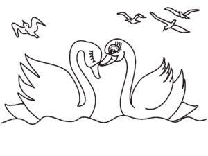 Лебедь картинки раскраски (7)