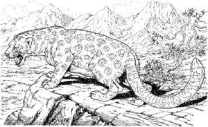 Леопард картинки раскраски (28)