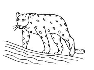 Леопард картинки раскраски (32)