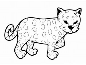 Леопард картинки раскраски (9)