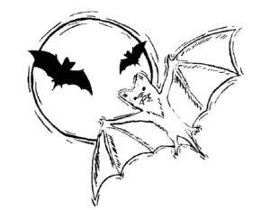 Летучая мышь картинки раскраски (28)
