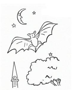 Летучая мышь картинки раскраски (5)