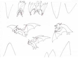 Летучая мышь картинки раскраски (9)