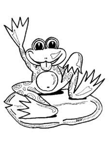 Лягушка картинки раскраски (1)