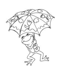 Лягушка картинки раскраски (34)