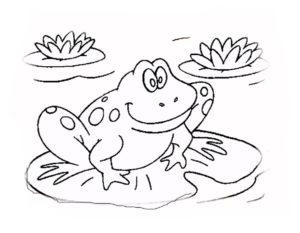 Лягушка картинки раскраски (36)