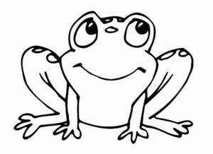 Лягушка картинки раскраски (38)