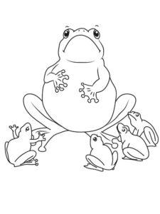 Лягушка картинки раскраски (42)