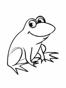 Лягушка картинки раскраски (50)