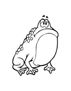 Лягушка картинки раскраски (70)