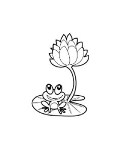 Лягушка картинки раскраски (71)