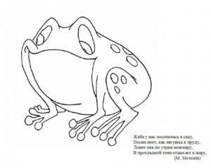 Лягушка картинки раскраски (8)